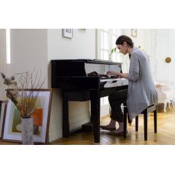N1X pianist.jpg