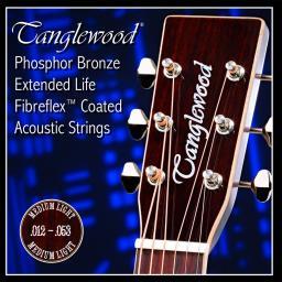 Tanglewood Strings 12-53.jpg