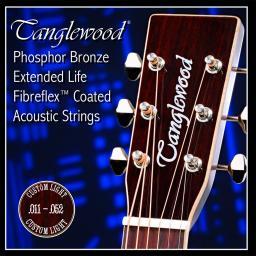 Tanglewood Strings 11-52.jpg
